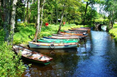 8-killarney-national-parkweb