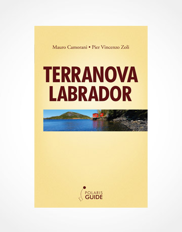 Terranova Labrador